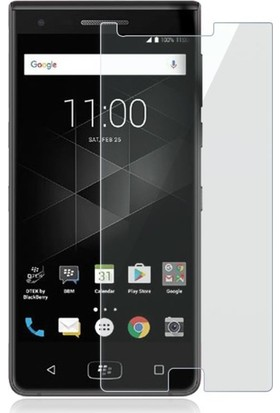 Microcase Blackberry Motion Tempered Glass Ekran Koruma Camı
