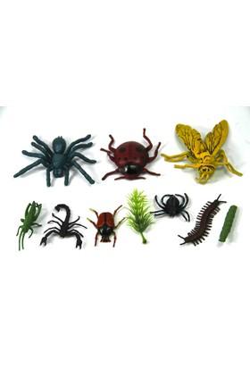 Vardem 9 Parça Hayvan Seti Böcekler