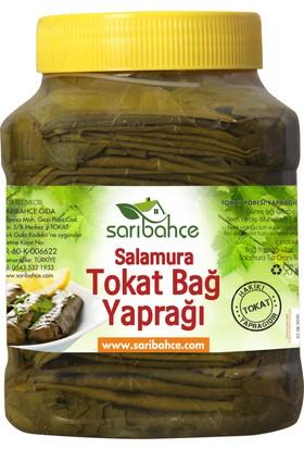 Sarıbahçe Tokat Asma Yaprağı 3 kg