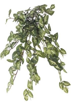 Piyop Yapay Sygonıum Sarmaşık Bush 62 cm