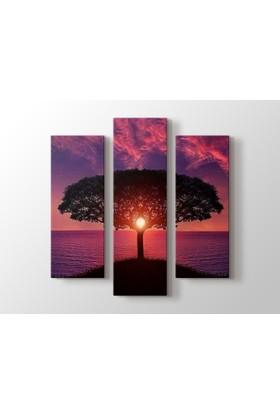 Dekorme Ağaç 3 Paraçlı Kanvas Tablo