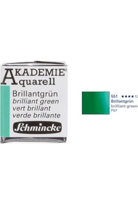 Schmincke Akademie Aquarell Suluboya 1/2 Tablet Brillant Green