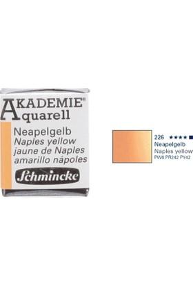 Schmincke Akademie Aquarell Suluboya 1/2 Tablet Naples Yellow