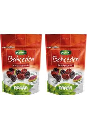 Peyman Bahçeden Antioxidant Mix 2 Adet x 50 gr