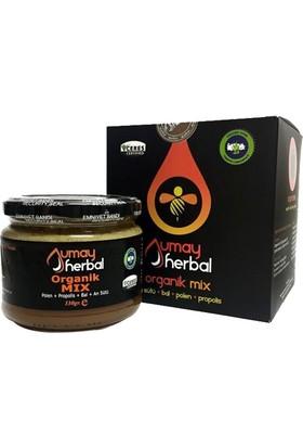 Umay Herbal Organik Mix (Bal Polen Propolis Aristu) 330 gr