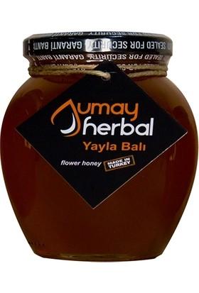 Umay Herbal Yayla Çiçek Balı (Sivas/Zara) 480 gr