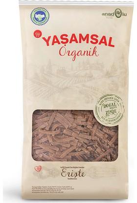 Yaşamsal Organik Tam Buğday Organik Erişte Makarna 800 gr