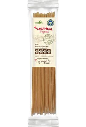 Yaşamsal Organik Organik Kısa Spagetti 500 gr