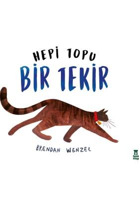 Hepi Topu Bir Tekir - Brendan Wenzel