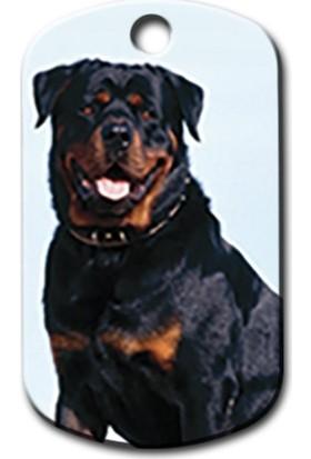 Pet Tag Rottweiler Resimli Köpek Künyesi
