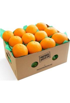 Portakalbahcem Yazlık Finike Portakalı Sıkmalık 5 kg