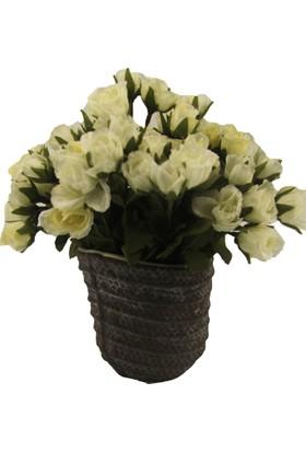 LuckyArt Saksı Çiçek
