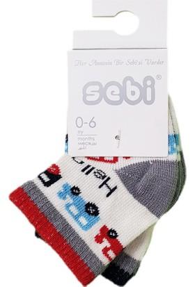 Sebi Bebe 6201 2'li Bebek Çorabı