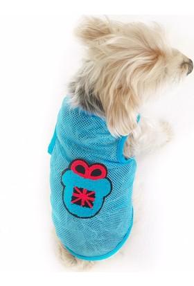 Kemique Blue Teddy Atlet By Köpek Kıyafeti Köpek Elbisesi