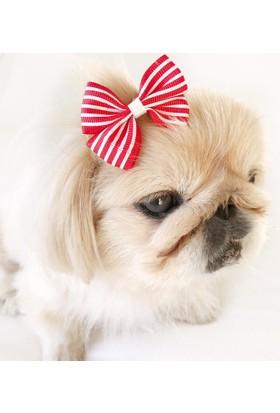Kemique Toka By Stripe Serisi Kırmızı Köpek Tokası
