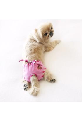 Kemique Cherry Stripes Secret Köpek İç Çamaşırı Regl Külot Don