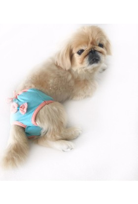 Kemique Mavi Peach Secret Köpek İç Çamaşırı Regl Külot Don