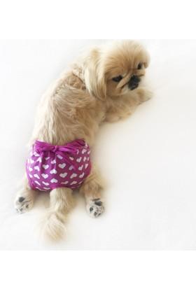 Kemique Purple Hearts Secret Köpek İç Çamaşırı Regl Külot Don