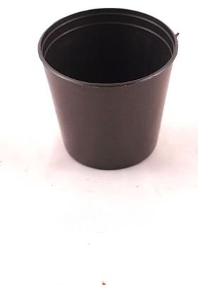 Serinova S5,5 cm Yuvarlak 10 adet Siyah Saksı