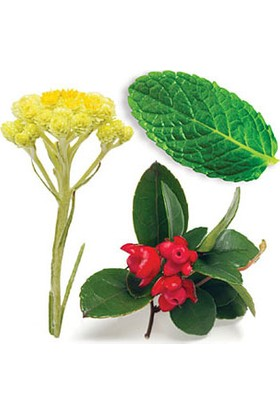 Tisserand Aromatheraphy Sleep Better Vücut Masaj Yağı 100 Ml