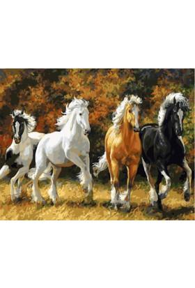 Eron Sanat Koşan Atlar Numaralı Boyama Seti Zorluk Seviyesi 4