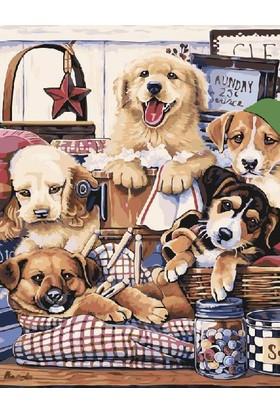 Eron Sanat Yavru Köpekler Numaralı Boyama Seti Zorluk Seviyesi 4