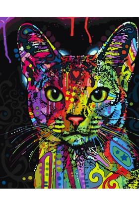 Eron Sanat Renkli Kedi Numaralı Boyama Seti Zorluk Seviyesi 3