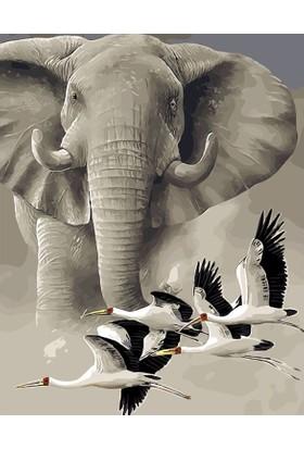 Eron Sanat Fil Ve Kuşlar Numaralı Boyama Seti Zorluk Seviyesi 3