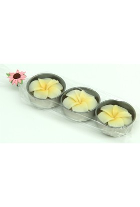 Plumeria Tealight Mum 3Lü