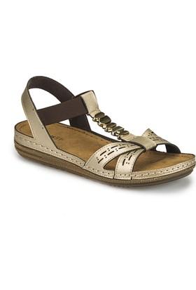 Polaris 81.158549.Z Altın Kadın Basic Comfort