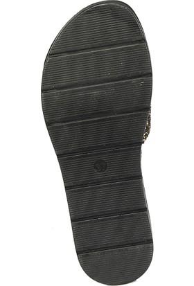 Polaris 81.158741.Z Altın Kadın Basic Comfort