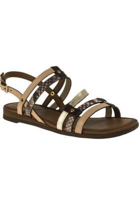Greyder 54554 Düz Pudra Kadın Sandalet