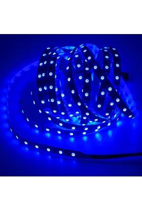Amberled Double Pcb 5050 3 Çipli İç Mekan Şerit Led Mavi ( 5 Metre )