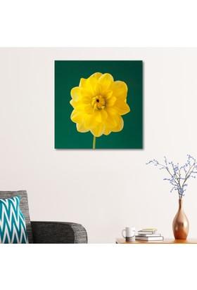Çerçevelet Sarı Çiçek 25 x 35 Cm Kanvas Tablo