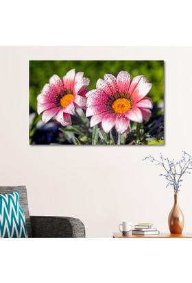 Çerçevelet Bahar Çiçekleri 35 x 25 Cm Kanvas Tablo