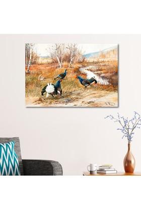 Çerçevelet Tavus Kuşları 35 x 25 Cm Kanvas Tablo