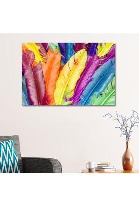 Çerçevelet Renkli Kuş Tüyü 35 x 25 Cm Kanvas Tablo
