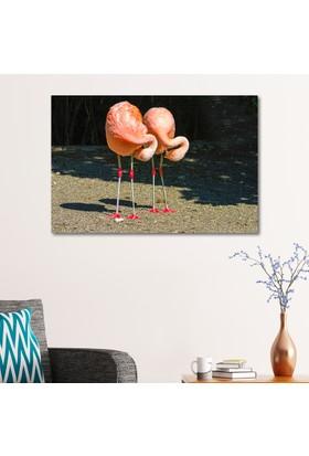 Çerçevelet Flamingolar 35 x 25 Cm Kanvas Tablo