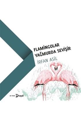 Flamingolar Yağmurda Sevişir