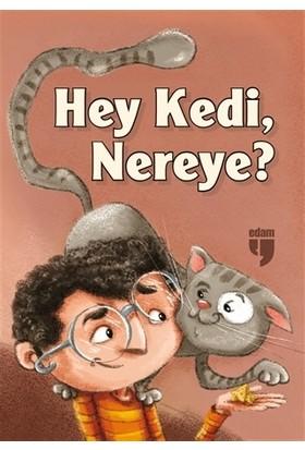 Hey Kedi, Nereye?
