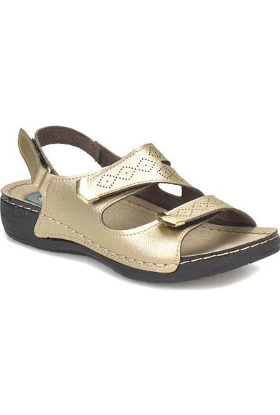 Polaris 81.156629.Z Altın Kadın Basic Comfort