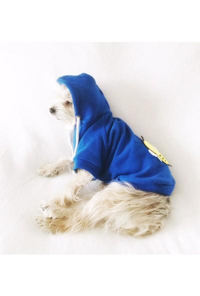 Kemique Arılı Köpek Süeteri Athletıque Köpek Kıyafet Elbise