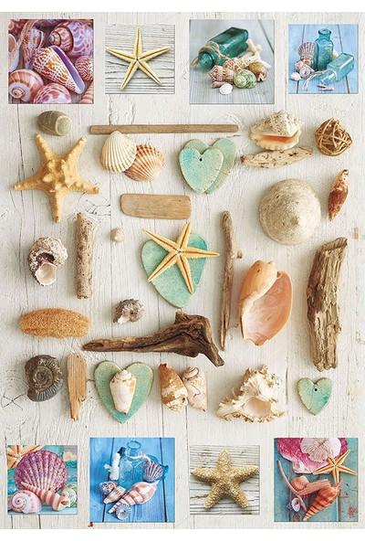 Educa Puzzle 1000 Parça Deniz Kabukları 17658