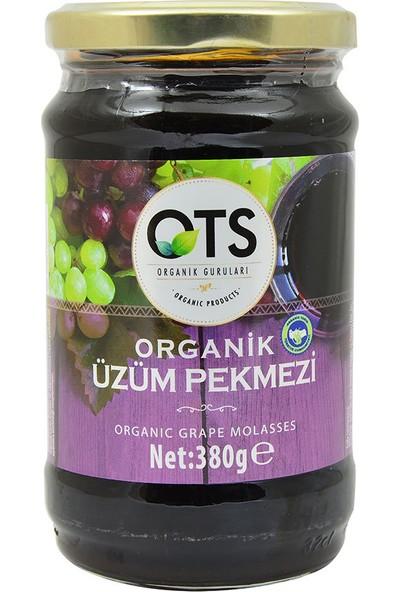 OTS Organik Organik Üzüm Pekmezi 380 gr