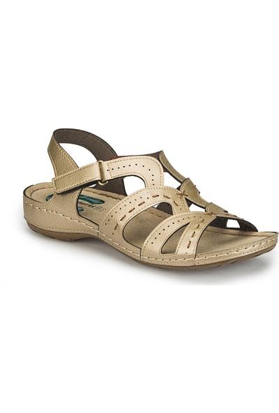 Polaris 81.158540.Z Altın Kadın Basic Comfort