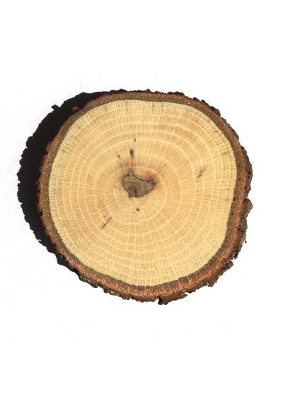 Akyol Odun Dilimi 7 İle 10 Çaplarında 1-2 Cm Kalınlıkta