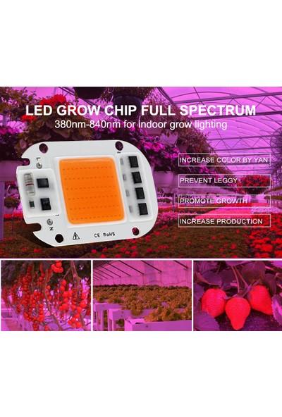 Tunç Botani̇k Bitki Yetiştirme Çip Ledi 50 W Full Spektrum Çip Led