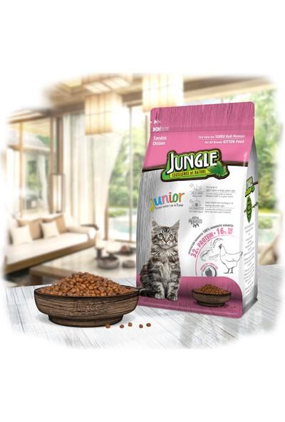Jungle 500 Gr Tavuklu Yavru Kedi Maması