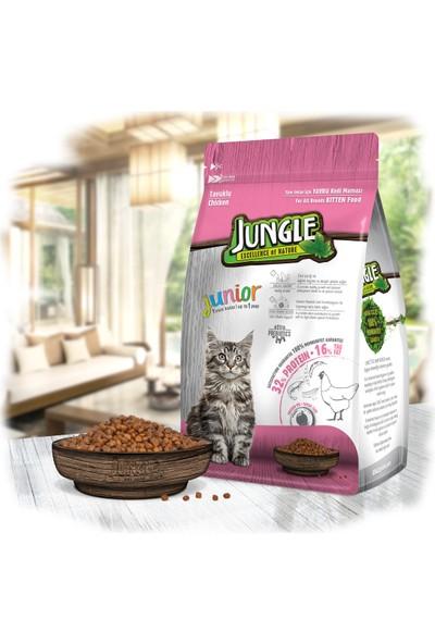 Jungle 1,5 kg Tavuklu Yavru Kedi Maması