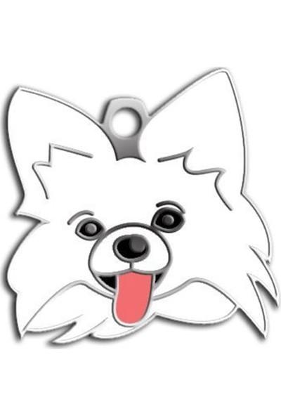 Pet Tag Papillon Köpek Künyesi (Beyaz)